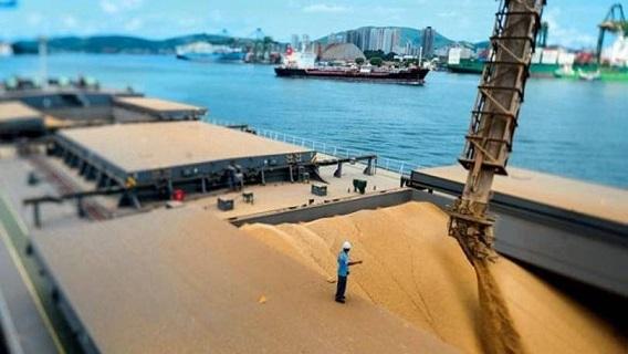 Embarques de soja do Brasil começam fortes em 16/17 e podem dobrar em fevereiro
